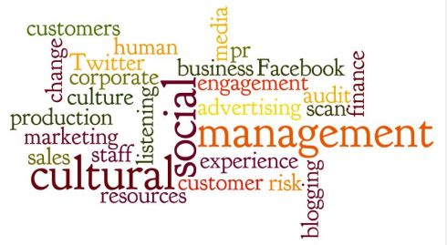 Wordle image - cultural audit