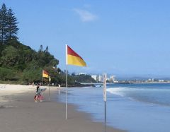 Flags designating surf swimming area, Rainbow Bay, Qld, Australia