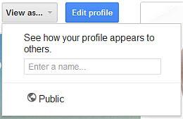 Google Plus menu item view as