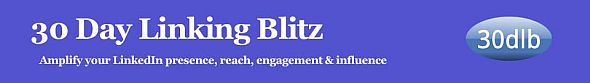 30 Day Linking Blitz - amplify your LinkedIn presence