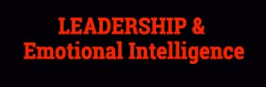Leadership and Emotional Intelligence [Podcast]